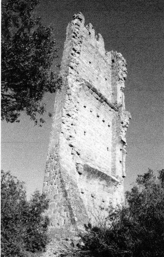 ruine-castell-merola-bergueda.jpg